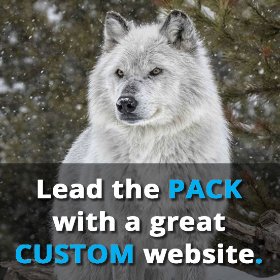 photo (for mobile phone screens) of a pretty white wolf and the text: 'Lead the pack with a great CUSTOM website.'